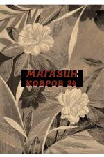 Бельгийский ковер argentum 63021 4343